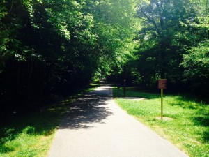 Crabtree Creek Trail in Raleigh NC